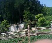 20070508135307.jpg